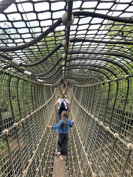 Een zicht op één van de hangbruggen in het park