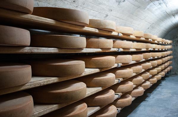 Een blik op bollen kaas in de kelder